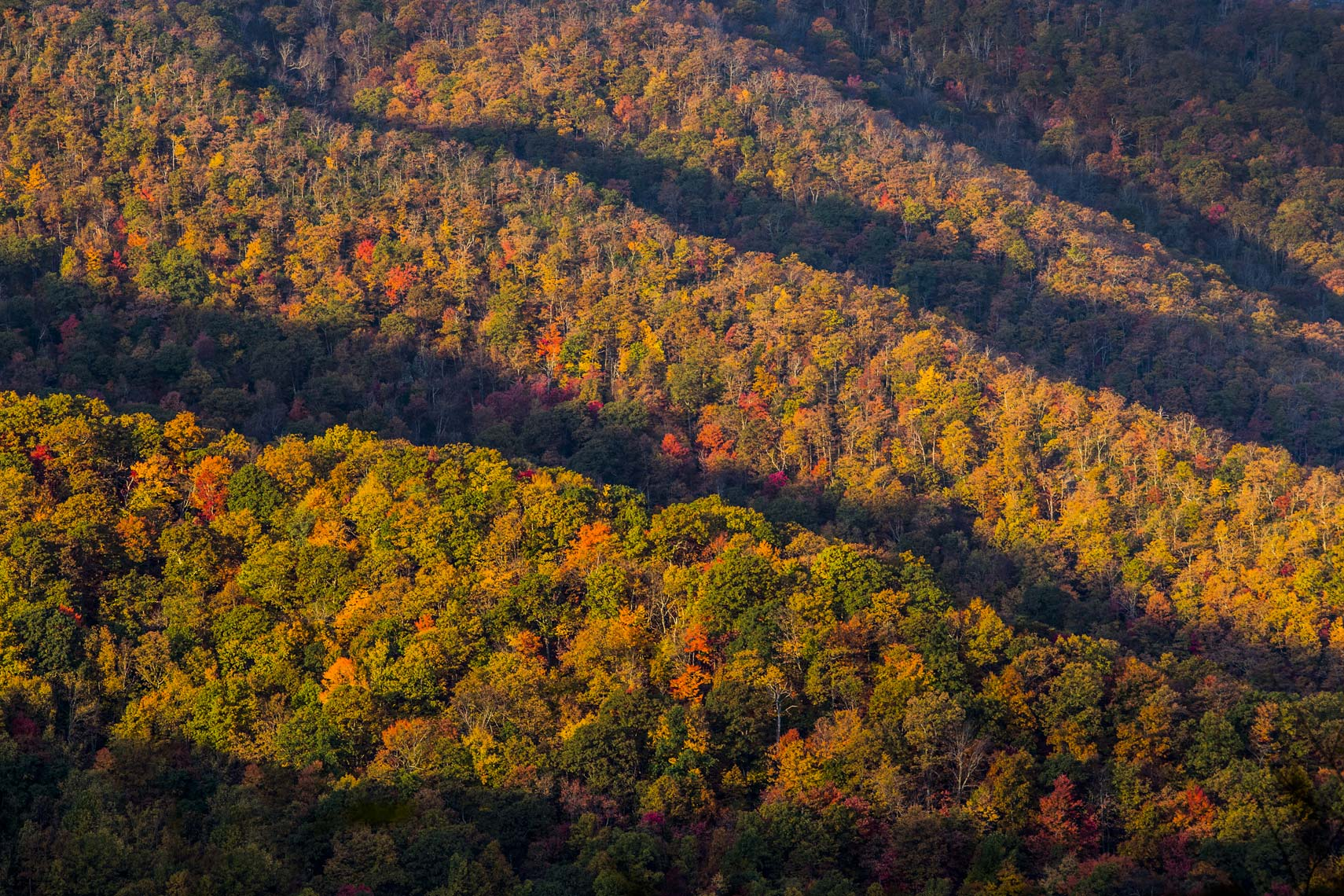 Ridge lines along the Appalachian Mountains